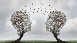 Head-shaped trees showing how communication should be.