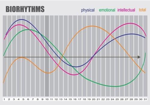 A biorhythms graph.