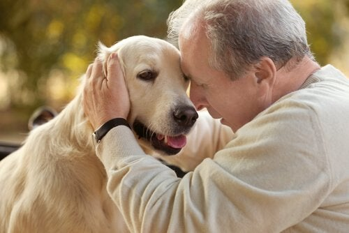 Animal-Assisted Therapy for Alzheimer's Patients