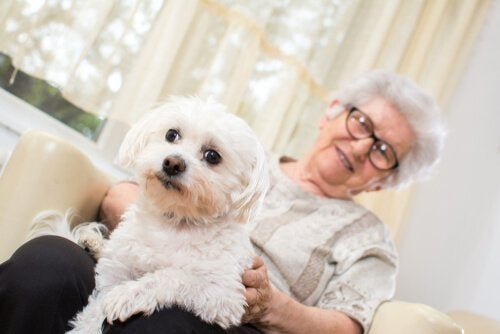 An older lady with a lap dog.