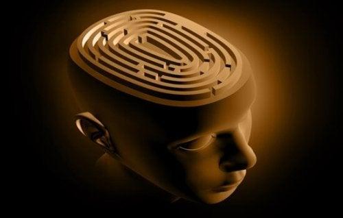 Brain labyrinth.
