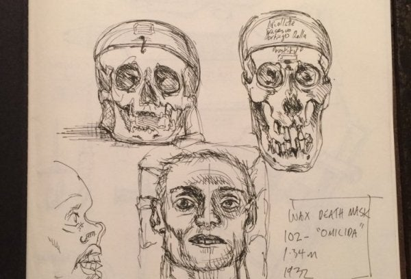 An image showing pencil drawings of skulls of various shapes.