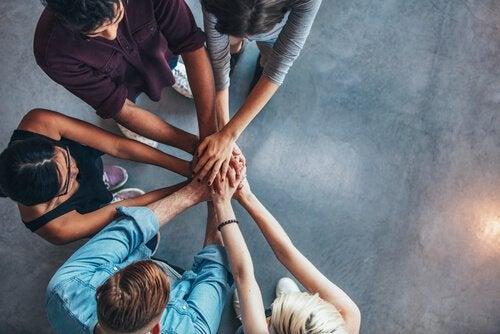 Holacracy: A New Organizational System