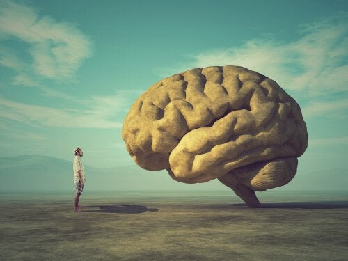 Man in front of a brain discovering brain facts.