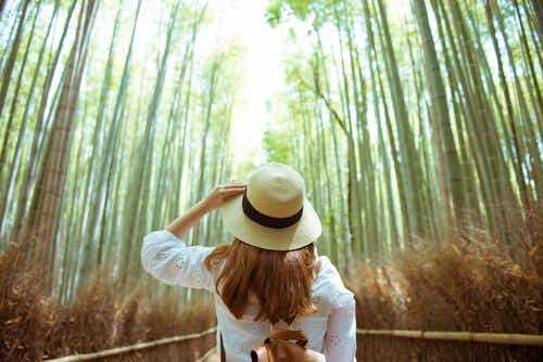 Four Exercises to Reconnect With Nature