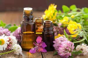 Aromatherapy: The Wonderful Power of Scents