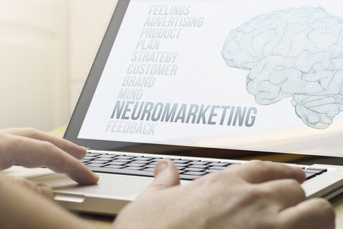 A person on the computer doing research on neuromarketing.