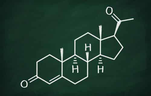 Progesterone: Characteristics and Functions