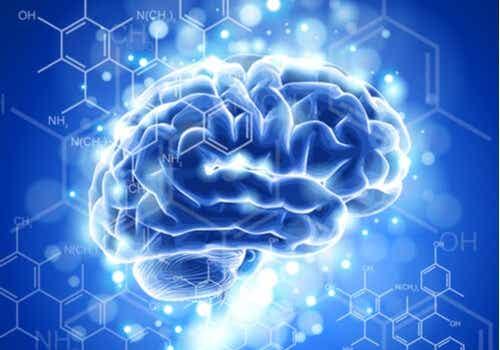 The Characteristics and Development of Neuroethics