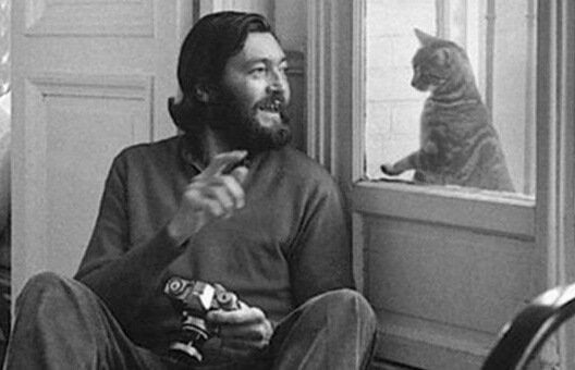 Cortázar sitting by a window and playing with a cat on the other side of it.