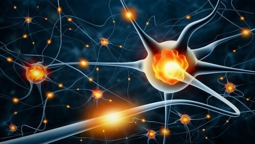 Neurons and nervous activity in peripheral neuropathy.