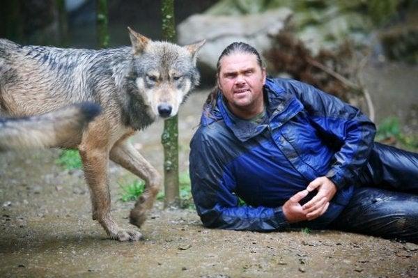 Shaun Ellis: A Man Among Wolves