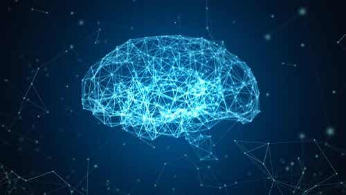The Blue Brain Project: A Reconstruction of the Brain