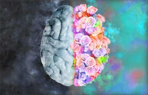 Neuroesthetics: Where Neurology and Art Meet