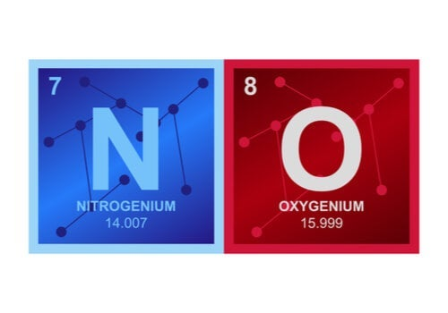 The composition of nitric oxide.