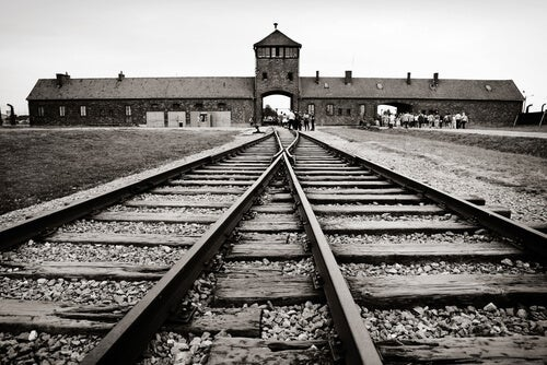 Train tracks leading into a concentration camp.