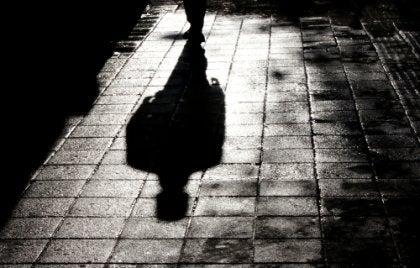 A shadow of a man walking on the sidewalk.