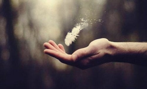 A hand with a fragile feather flying away.