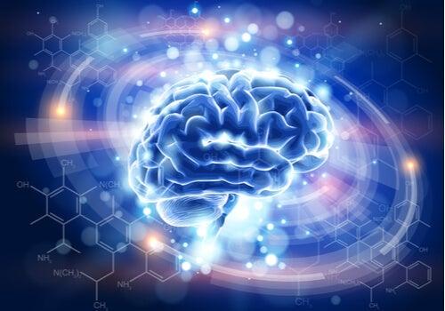 An illuminated brain.