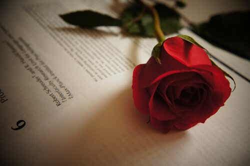 Tirso de Molina - Five Love Quotes