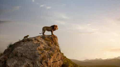 A Walk Down Memory Lane: The Lion King