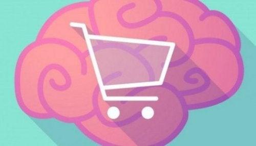 A consumer's brain.