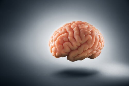 How Poverty Changes the Human Brain