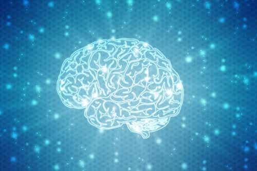 What Are Neuromyths?