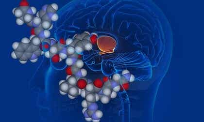 Vasopressin: The Anti-Diuretic Hormone