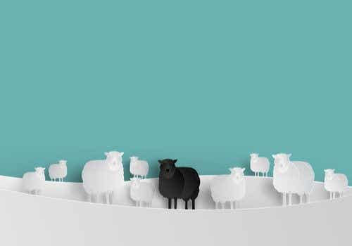 What's the Black Sheep Effect?