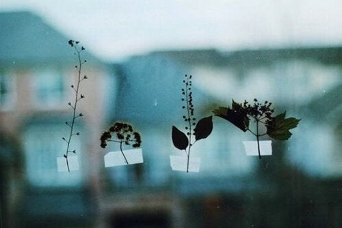 Four twigs taped to a window.