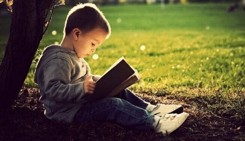 A boy sitting by a tree reading a book.