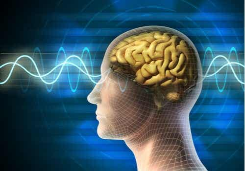 The Uses of Electroconvulsive Therapy