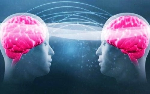 "An image of two brains sharing a ""wavelength""."