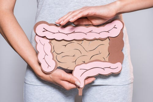 Mental Digestion: A Possible Source of Intestinal Problems