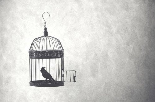 A bird in a cage with the door open.
