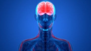 Biological Psychiatry: Unlocking the Nervous System