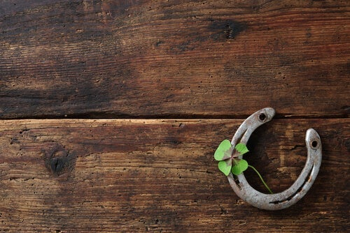 A horseshoe and a four leaf clover.