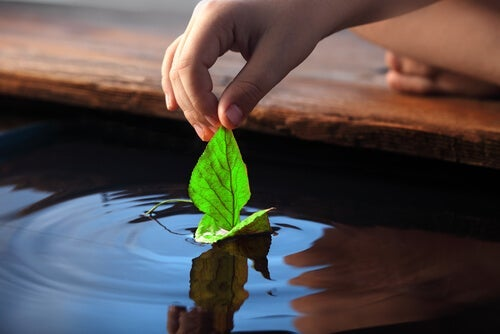 A child playing with a leaf by the water.