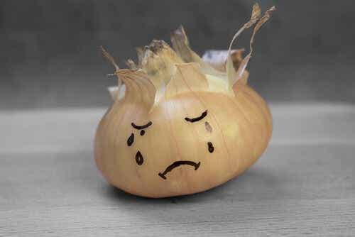 The Heart of an Onion - A Story about Justice