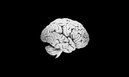 A brain suspended in space.
