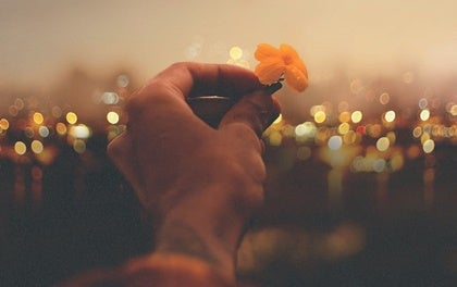 A hand holding a flower.