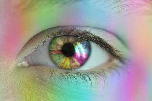 Color Vision in Humans - How Does It Work?