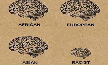 How Does the Brain of a Racist Work?