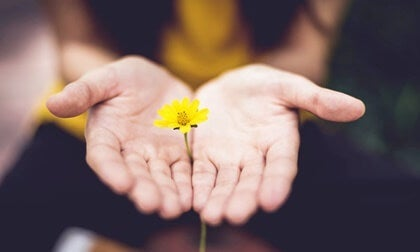 5 Sayings to Start a New Chapter with Hope