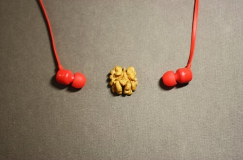A walnut between headphones.