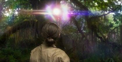 A scene from Natalie Portman's Annihilation.