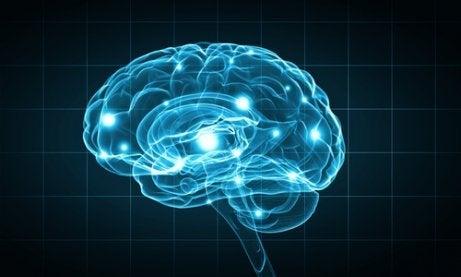 An illuminated blue brain.