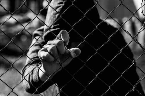 Criminal Psychology: Examining Criminal Behavior