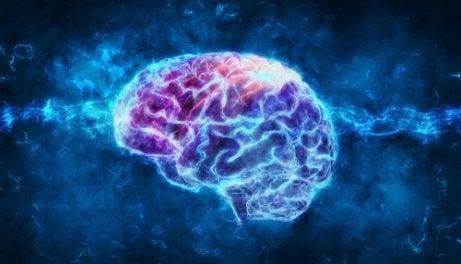 An illuminated purple and blue brain.